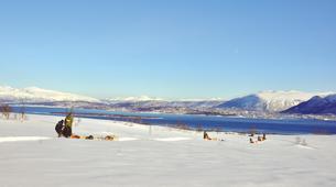 Chiens de traîneau-Tromsø-Expédition Chiens de Traîneau 2 Jours à Tromsø-3