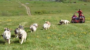 Chiens de traîneau-Sentenac-de-Sérou-Randonnée Cani-kart en Ariège près de Foix-4