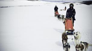 Chiens de traîneau-Tromsø-Expédition Chiens de Traîneau 2 Jours à Tromsø-1