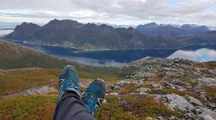 Hiking / Trekking-Bodø-Guided summit hike to Mt. Litltind in Bodø-4