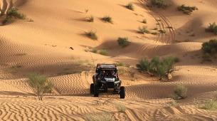 Quad biking-Douz-Quad biking excursion in the Sahara Desert from Douz-6