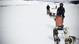 Dog sledding-Tromsø-Self-drive Arctic dog sledding excursion in Tromsø-1