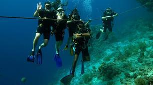 Scuba Diving-Sharm El-Sheikh-PADI scuba diving course in Sharm El-Sheikh-3