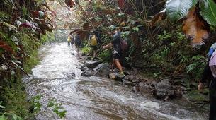Canyoning-Tahiti-Canyon des Lavatubes à Tahiti-7
