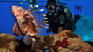 Scuba Diving-Sharm El-Sheikh-PADI Discover scuba diving course in Sharm El-Sheikh-1