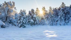 Snowshoeing-Stavanger-Winter/Spring Hike to Preikestolen (Pulpit Rock) in Ryfylke-14