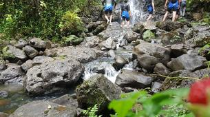 Canyoning-Tahiti-Canyon des Lavatubes à Tahiti-4