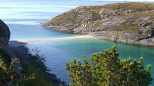 Hiking / Trekking-Bodø-Guided coastal hike to Hovdsundet in Bodø-6