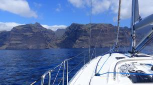 Experiences Wildlife-Los Gigantes, Tenerife-Whale watching tour from Los Gigantes, Tenerife-1