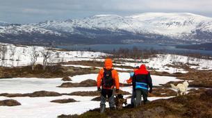 Randonnée / Trekking-Tromsø-Trekking with huskies in Tromsø-4