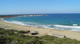 Quad-Paphos-Quad or buggy tour from Coral beach to Lara Bay, Paphos-4
