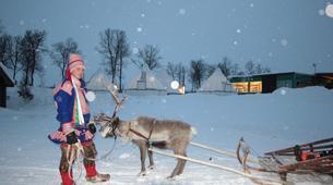 Traîneau à rennes-Tromsø-Reindeer sledding day trip in Tromsø-5