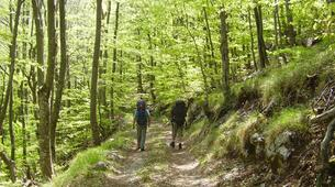 Randonnée / Trekking-Karlovac-Hiking in Risnjak National Park from Karlovac-4
