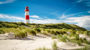 Stand up Paddle-Sylt-SUP rentals in Sylt-6