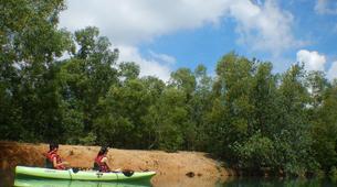 Kayak de mer-Singapour-Kayaking tour to Ketam Island from Pulau Ubin-6