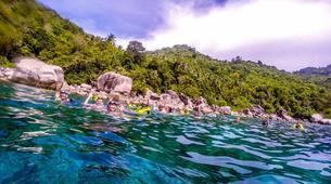 Snorkeling-Koh Tao-Island snorkelling excursion around Koh Tao-3