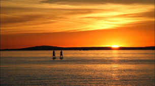 Stand up Paddle-Sylt-SUP rentals in Sylt-1