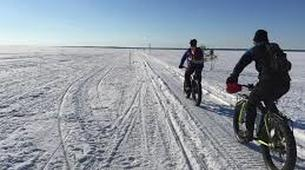 Fat Biking-Luleå-Fatbike tours around Luleå-4