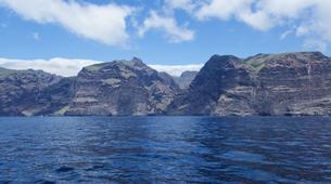 Experiences Wildlife-Los Gigantes, Tenerife-Whale watching tour from Los Gigantes, Tenerife-6
