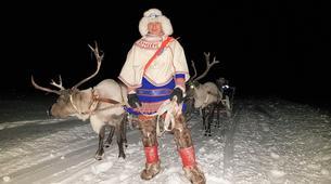 Traîneau à rennes-Tromsø-Reindeer sledding day trip in Tromsø-2