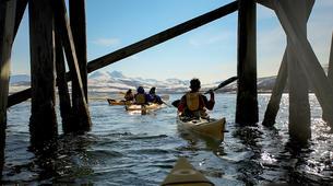 Sea Kayaking-Tromsø-Sea kayaking tour in Tromsø-1