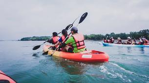 Kayak de mer-Singapour-Kayaking tour to Ketam Island from Pulau Ubin-3
