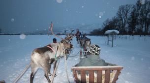 Traîneau à rennes-Tromsø-Reindeer sledding day trip in Tromsø-1