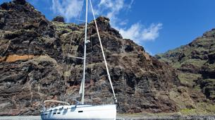 Wildlife expedition-Los Gigantes, Tenerife-Whale watching excursions from Los Gigantes-4