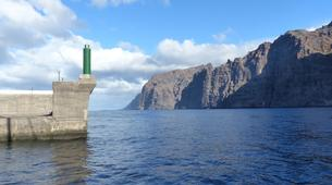 Wildlife expedition-Los Gigantes, Tenerife-Whale watching excursions from Los Gigantes-3
