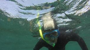 Snorkeling-Noja-Snorkeling excursion in Noja near Santander-5