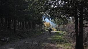 Mountain bike-Parco di Nebrodi-MTB Lago Trearie e Lago Cartolari-3