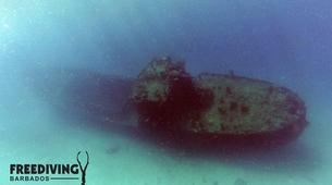 Freediving-Bridgetown-AIDA 1 & 2 Freediving course in Barbados-5