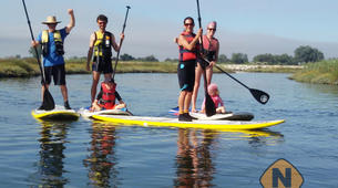 Stand Up Paddle-Murtosa-SUP excursion in the canals of Murtosa-4