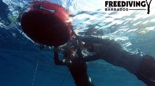 Freediving-Bridgetown-AIDA 1 & 2 Freediving course in Barbados-1