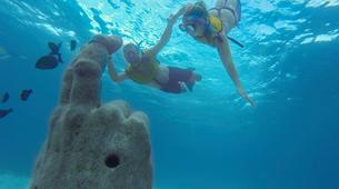 Snorkeling-Cancun-Snorkeling with turtles, over a shipwreck and MUSA tour in Cancun-1