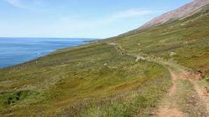 Randonnée / Trekking-Akureyri-Hiking tour in Eyjafjörður, Akureyri-3