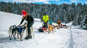 Survival Training-Jura-Stage de survie grand froid Musher dans le haut Jura-6