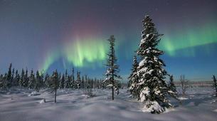 Snowshoeing-Kiruna-Snowshoeing excursions in Kiruna-1