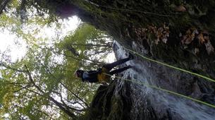 Canyoning-Arriondas-Canyoning at La Molina gorge in Picos de Europa National Park-4