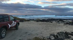 Kitesurfing-Corralejo, Fuerteventura-Surf group courses in Corralejo, Fuerteventura-4