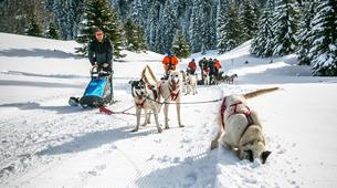 Survival Training-Jura-Stage de survie grand froid Musher dans le haut Jura-5