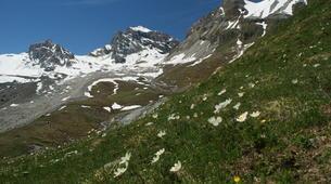 Randonnée / Trekking-Vallée d'Aoste-Randonnée au sommet du Grand Paradis dans les Alpes italiennes-1