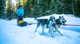 Survival Training-Jura-Stage de survie grand froid Musher dans le haut Jura-1