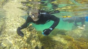 Snorkeling-Noja-Snorkeling excursion in Noja near Santander-3