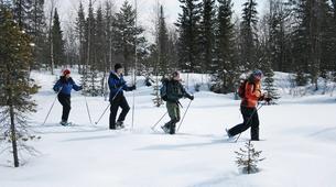 Snowshoeing-Kiruna-Snowshoeing excursions in Kiruna-5