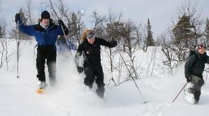 Snowshoeing-Kiruna-Snowshoeing excursions in Kiruna-2