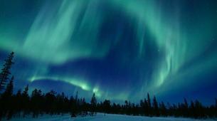 Snowshoeing-Kiruna-Snowshoeing excursions in Kiruna-4