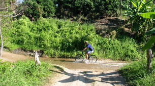 Mountain bike-Chiang Mai-Cross Country mountain biking in Doi Suthep National Park-10