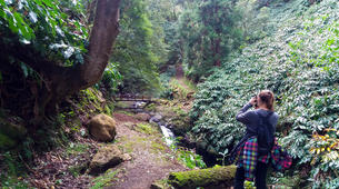 Hiking / Trekking-São Miguel-Hiking excursions in Sao Miguel from Ribeira Grande-1