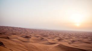 Quad biking-Dubai-Dune Buggy Safari in Dubai-4